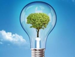 3 ý tưởng ứng dụng tăng trưởng xanh, phát triển bền vững