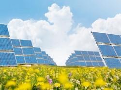 Chung tay xây dựng những mùa xuân năng lượng