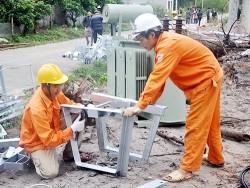 Tài trợ dự án cải tạo lưới điện vùng sâu, vùng xa