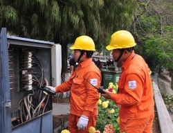 EVNHANOI tăng cường đảm bảo điện phục vụ tết Kỷ Hợi