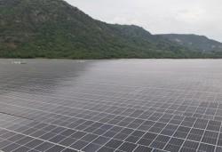 Sao Mai có thêm 1.000 tỷ đồng doanh thu mỗi năm từ điện mặt trời