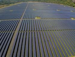 Công bố hoàn thành Nhà máy điện mặt trời Sao Mai - An Giang