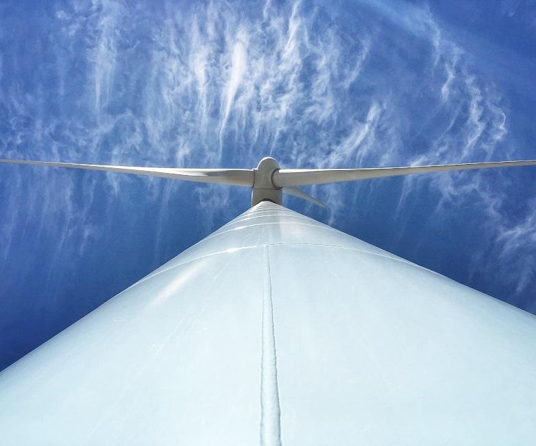 Trao quyết định đầu tư dự án điện gió Tân Phú Đông 1 và 2