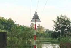 PC Phú Thọ: Nhiều giải pháp đảm bảo an toàn hành lang lưới điện