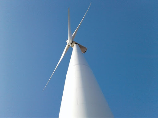 The wind power projects with a total capacity of 70 MW in Dak Lak have been granted investment policy