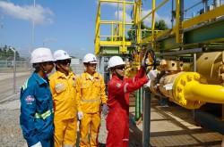 PV GAS đẩy mạnh triển khai các giải pháp ứng phó trong tình hình mới