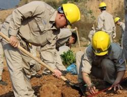 Thủy điện Sơn La tổ chức tết trồng cây đầu năm