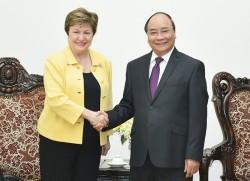 Thủ tướng tiếp Tổng giám đốc WB