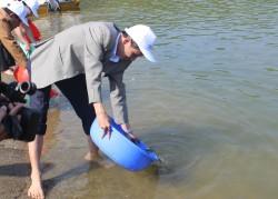 Thả hơn 20.000 cá giống xuống hồ thủy điện Sông Tranh 2
