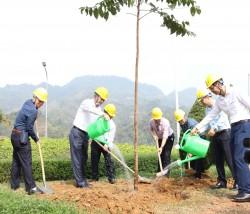 Tổng Giám đốc EVN trồng cây tại Thủy điện Tuyên Quang