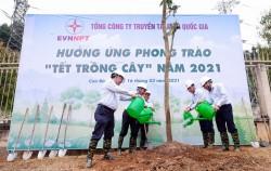 EVNNPT hưởng ứng phong trào 'Tết trồng cây'