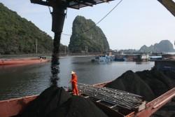 Vinacomin yêu cầu các đơn vị bám sát thị trường tiêu thụ than
