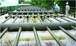 Lập BCĐ cấp nước an toàn, chống thất thoát, thất thu nước sạch