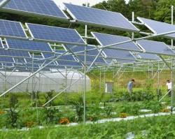 Ninh Thuận sẽ có DA điện mặt trời kết hợp sản xuất nông nghiệp