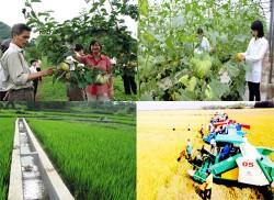Phấn đấu cả nước có ít nhất 31% xã nông thôn mới