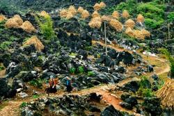 Quy hoạch Công viên địa chất toàn cầu Cao nguyên đá Đồng Văn