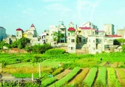 Giải quyết khiếu nại về đất đai của bà Ngô Thị Hợp