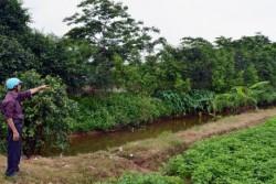 Công khai việc kỷ luật cán bộ liên quan đến khiếu nại đất đai
