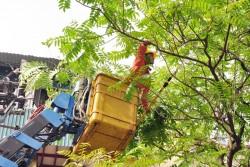 An toàn điện mùa mưa bão, cần sự chung tay của người dân