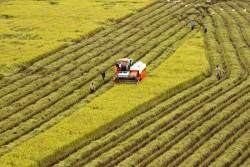 Tạo thuận lợi nhất để thu hút doanh nghiệp đầu tư vào nông nghiệp