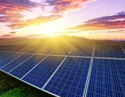 Chấp thuận đầu tư dự án điện mặt trời AMI Khánh Hòa