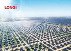 LONGi và Hexagon Peak ký thỏa thuận cung cấp pin mặt trời
