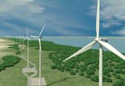 Bộ Công Thương kiến nghị Thủ tướng kéo dài cơ chế giá điện gió cố định