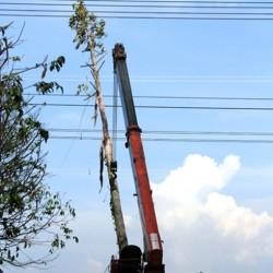 Sự cố đường dây 500kV và vấn đề an toàn hệ thống điện