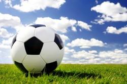 Xử lý vấn đề tồn tại của Cty cổ phần Thể dục thể thao Việt Nam