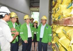 Cục Bảo vệ Thực vật thăm và làm việc tại PVFCCo