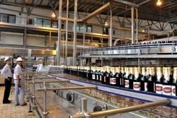 Giải pháp giúp tiết kiệm năng lượng trong sản xuất bia