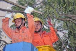 Hà Nội đã khôi phục xong sự cố lưới điện do cuồng phong