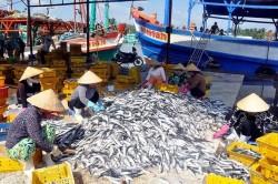 Gỡ vướng chính sách bảo hiểm thủy sản