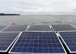 Thêm dự án điện mặt trời tại Bình Định được chấp thuận đầu tư