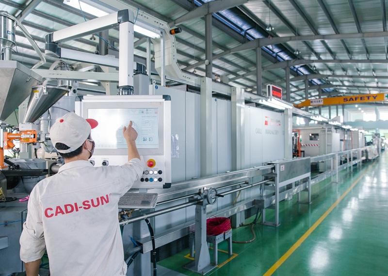 CADI-SUN chủ động trong hội nhập quốc tế 1