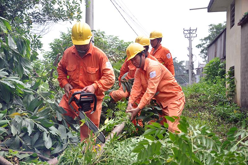 EVNHANOI chủ động bảo vệ hành lang lưới điện cao áp 3