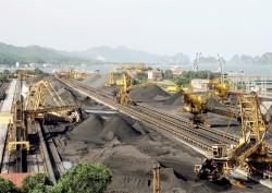 Tuyển than Cửa Ông tăng cường công tác pha trộn than