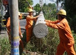 EVNSPC diễn tập ứng phó sự cố lưới điện do mưa bão