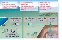Đánh giá khả năng áp dụng công nghệ thu tách CO2 cho các nhà máy nhiệt điện của Petrovietnam
