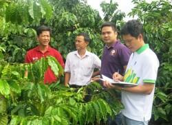 PVFCCo tham gia mô hình hợp tác công tư