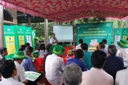 Phân bón Phú Mỹ đạt hiệu quả cao cho cây sầu riêng