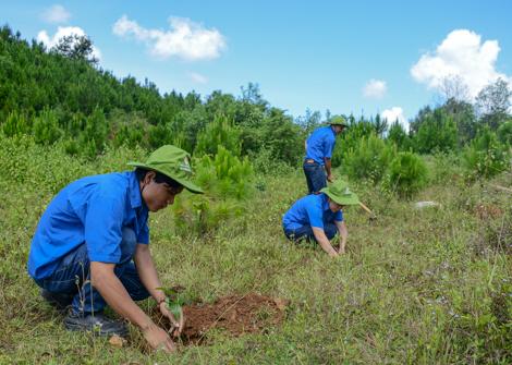 Thủy điện Đồng Nai hưởng ứng ngày môi trường 2