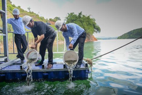 Thủy điện Đồng Nai hưởng ứng ngày môi trường 1