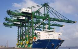 DosanVina exports three Cargo Container Cranes to India