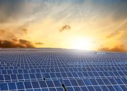 Hàn Quốc muốn đầu tư Công viên điện mặt trời tại Nghệ An