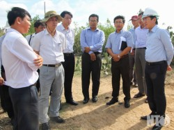 Gỡ vướng giải phóng mặt bằng dự án điện mặt trời Trung Nam