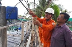Phối hợp phát triển, quản lý tốt lưới điện miền Nam