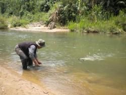 Phê duyệt báo cáo đánh giá tác động môi trường Thủy điện Chà Vàl