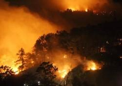 Điện lực Hương Sơn (Hà Tĩnh) thức trắng đêm chống cháy rừng