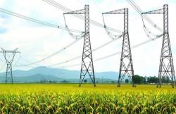 EVN xây dựng phương án đảm bảo cấp điện đến hết năm 2019